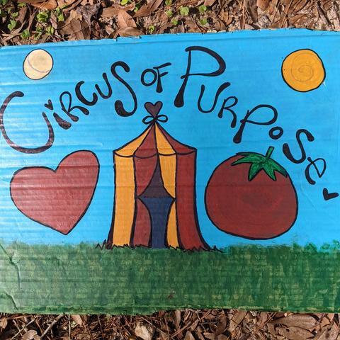 Circus of Purpose - Organization - United States - CircusTalk