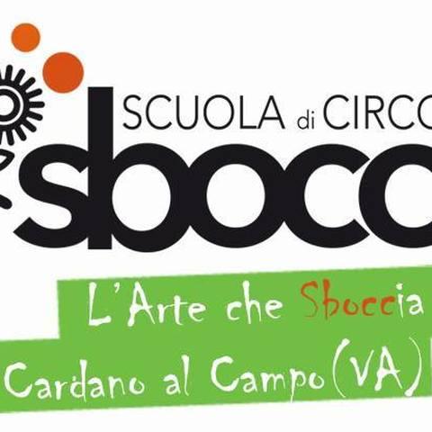 SBOCC-L'ARTE CHE SBOCCIA - School - Italy - CircusTalk