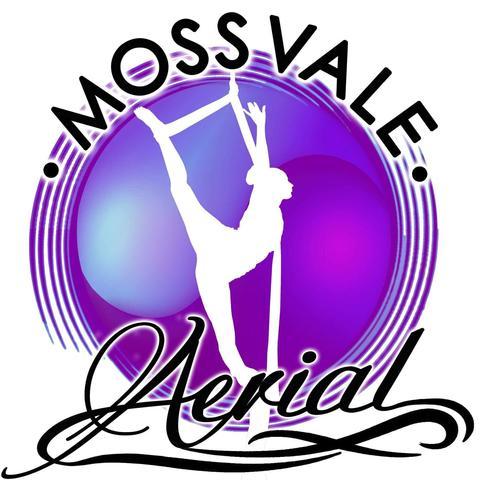Moss Vale Aerial - School - Australia - CircusTalk
