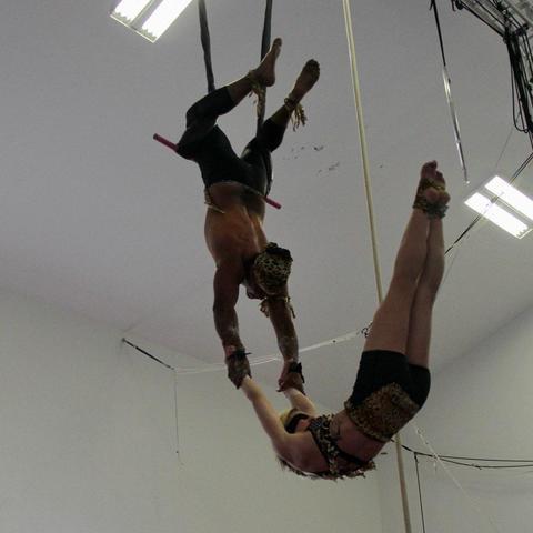 Sarsh Lavooe - Individual - Canada - CircusTalk