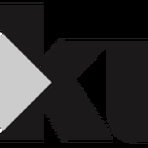 Association Kulturanova - Agency - Serbia - CircusTalk