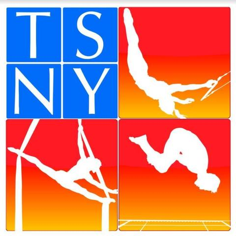 Trapeze School New York - NYC - School - United States - CircusTalk