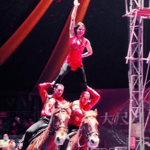 Alona Budovich - Individual - Ukraine - CircusTalk