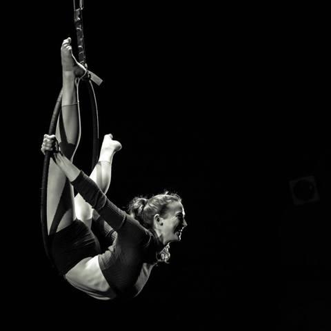 Eliza Dach - Individual - United States - CircusTalk