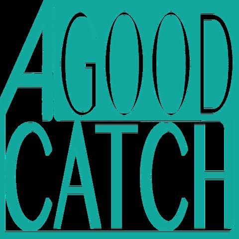 A GooD Catch - Company - Australia - CircusTalk