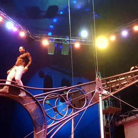 Hewinson Lyezkosky Bolivar - Individual - Australia, Colombia - CircusTalk