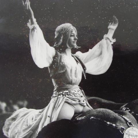 Lorna Spellman - Individual - United States - CircusTalk
