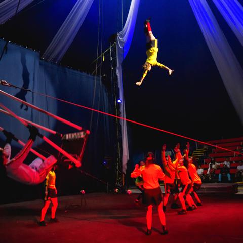 Axioma - Company - Colombia - CircusTalk