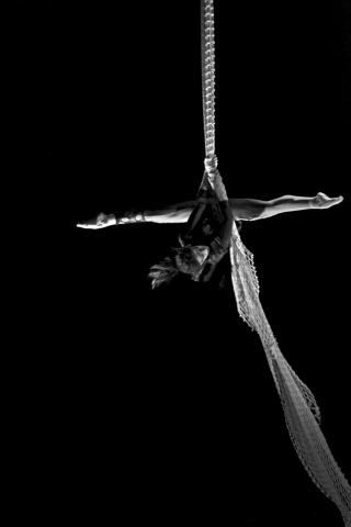 Fran Sperling - Individual - United States - CircusTalk