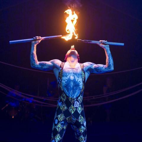 Mitch Jones - Individual - Australia, New Zealand - CircusTalk