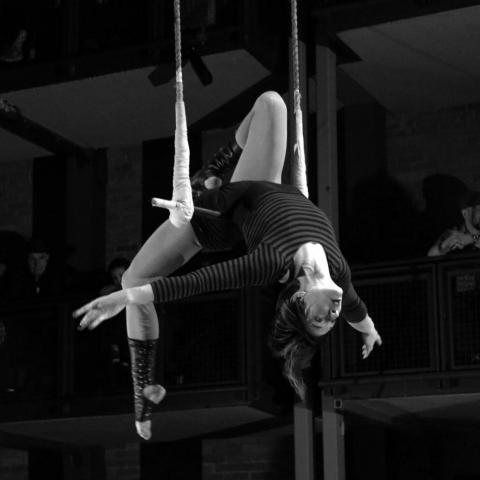 Britt Howlett - Individual - Canada - CircusTalk