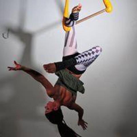 Wild Star Dance - Supplier - Australia - CircusTalk