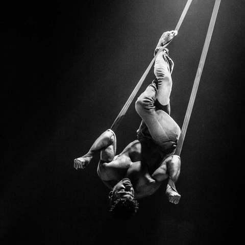 Jeremy Javierre - Individual - Belgium - CircusTalk