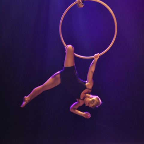 Kristy Seymour - Individual - Australia - CircusTalk