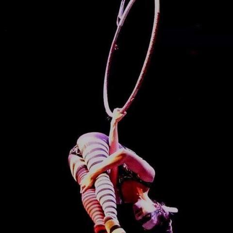 Claira Bell - Individual - United States - CircusTalk