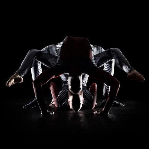 Ess Hödlmoser - Individual - Canada - CircusTalk