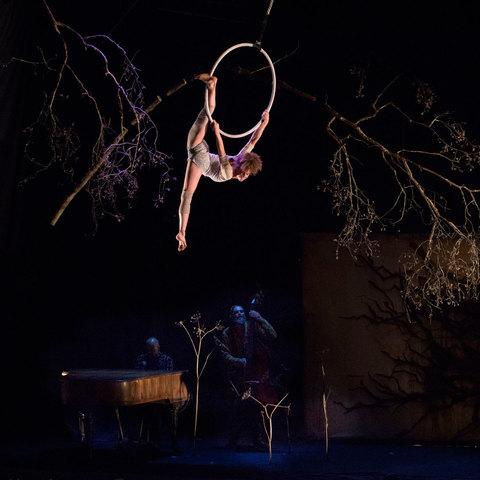 Analia Serenelli - Individual - Argentina, France - CircusTalk