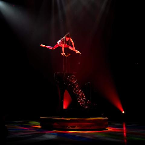 Shenea Stiletto - Individual - United States - CircusTalk