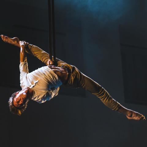 Sander Boschma - Individual - Netherlands - CircusTalk