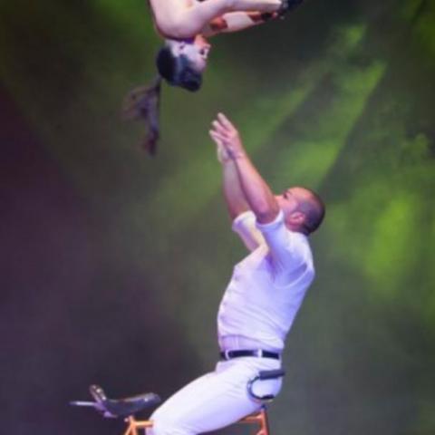 Darien Fraga Leyva - Individual - Cuba - CircusTalk
