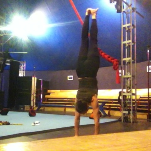 Susanne Holl Busse - Individual - Germany - CircusTalk