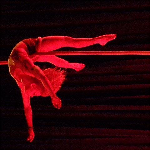Dillan Harris - Individual - United States - CircusTalk