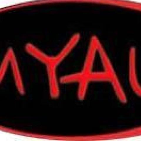 MYAU - Festival - Spain - CircusTalk