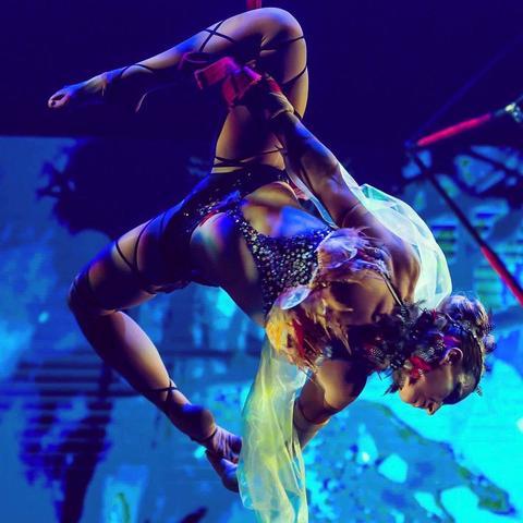 Pippa Du Frayer - Individual - Hong Kong SAR China, United Kingdom, United States - CircusTalk