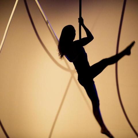 Saar Rombout - Individual - Netherlands - CircusTalk
