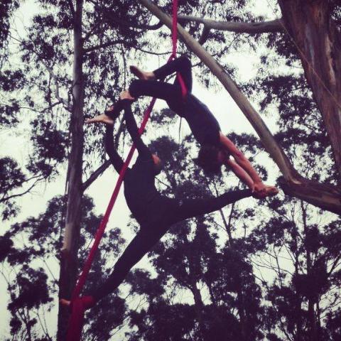 Fabian sanchez - Individual - Colombia - CircusTalk