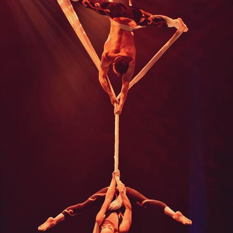 Cirkadance - Organization - France - CircusTalk