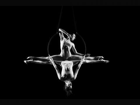 Air Elegance - Company - Belgium - CircusTalk