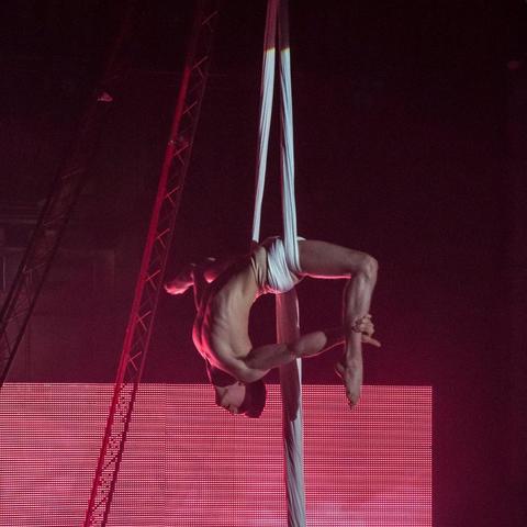 Joe Keeley - Individual - United Kingdom - CircusTalk