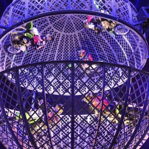 DIORIOS GLOBE OF DEATH - Company - France - CircusTalk