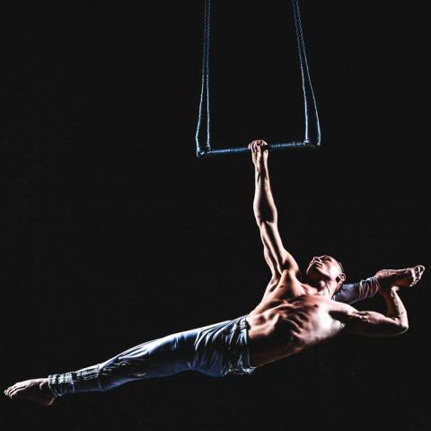 Alex Luke - Individual - Russia - CircusTalk