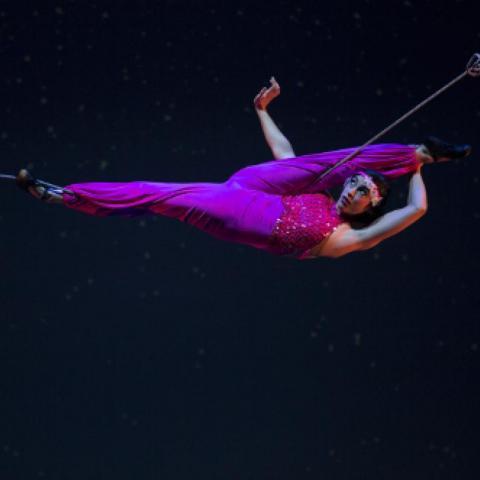 Esther de Monteflores - Individual - United States - CircusTalk