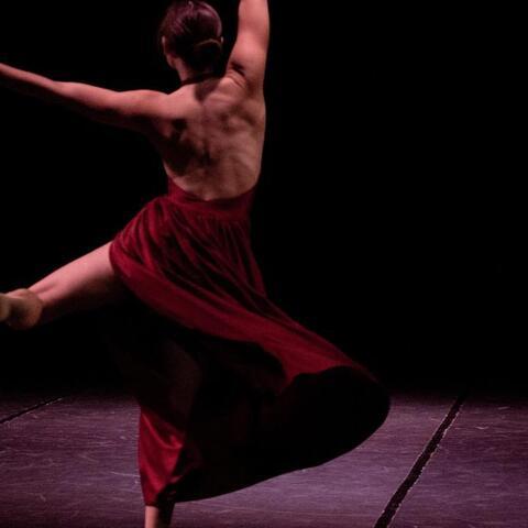 Romina Buscaglia Vasquez - Individual - Chile, Italy - CircusTalk