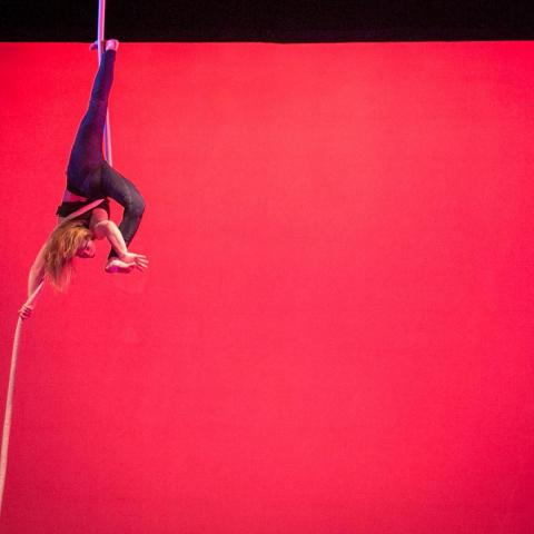 Katja Orlow-Ornstein - Individual - United States - CircusTalk