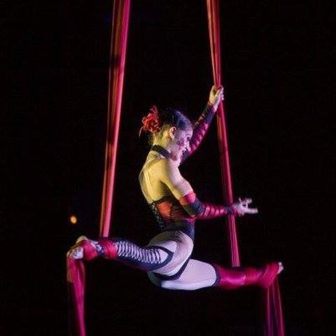 Susan Jasters - Individual - Italy - CircusTalk
